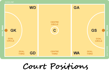 Court  Positions